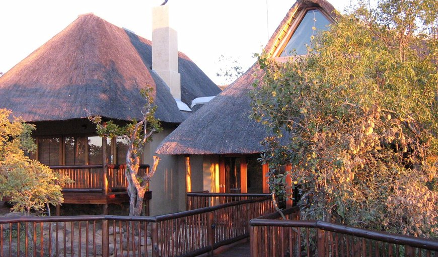 Matingwe Lodge and Private Game Reserve in Vaalwater, Limpopo, South Africa