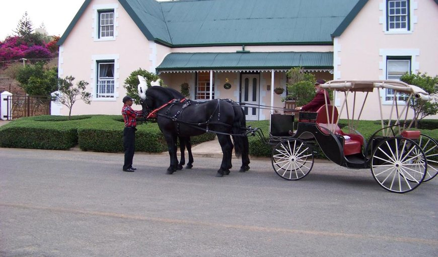 Horse and Carriage in front of the cottage