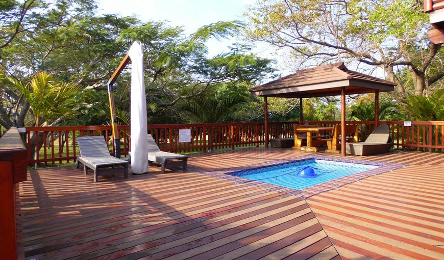 Beautiful deck and swimming pool for guests
