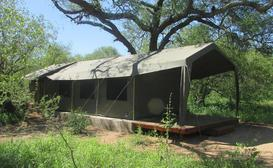 Masingitana Tented Camp image