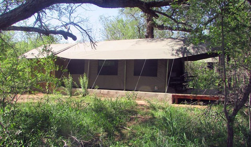 Welcome to the stunning Mzsingitana Tented Camps