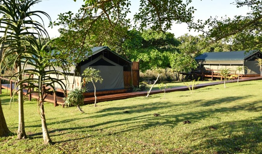 Welcome to Kingfisher Lakeside Retreat in Southbroom, KwaZulu-Natal, South Africa
