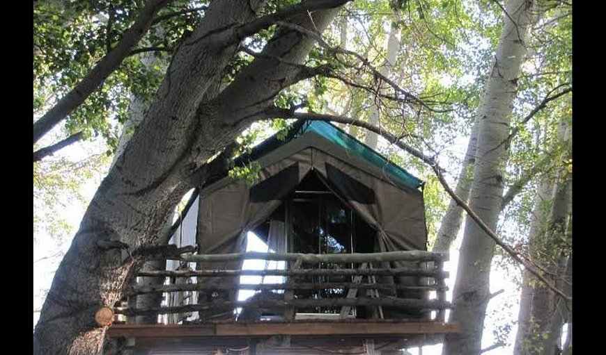 The Treehouse in Carnarvon, Northern Cape, South Africa