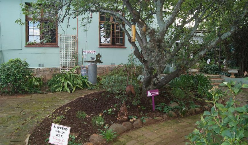 The Planes Guest House in Kokstad, KwaZulu-Natal , South Africa