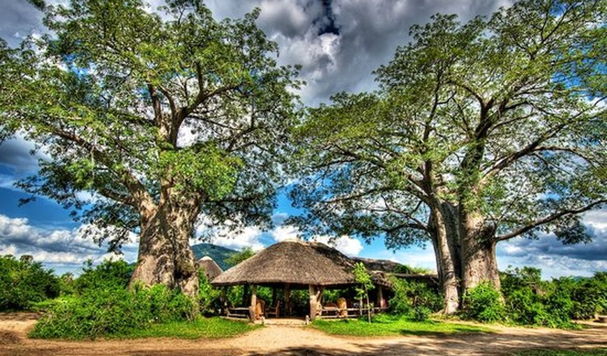 Family Chalet in Liwonde National Park, Liwonde, Malawi, Malawi
