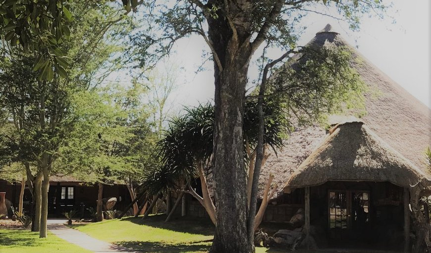 Welcome to Tawni Safari Lodge in Polokwane, Limpopo, South Africa