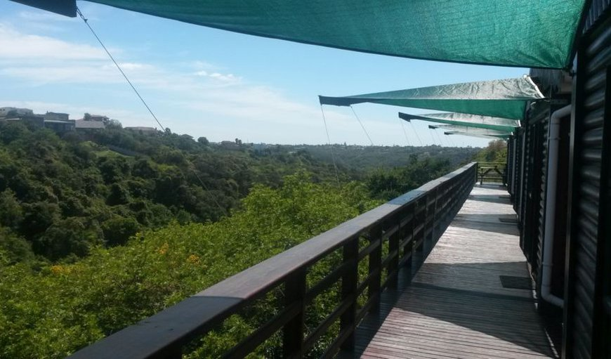 The Tusks Treetop Lodge in Vincent , East London, Eastern Cape, South Africa