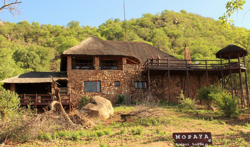 Welcome to Mopaya Safari Lodge in Phalaborwa, Limpopo, South Africa