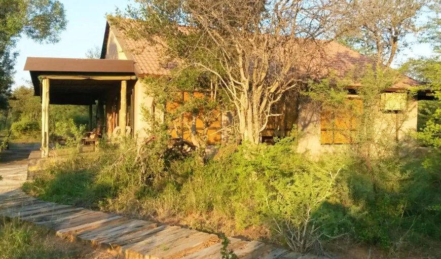 Welcome to the Bush House in Thabazimbi, Limpopo, South Africa