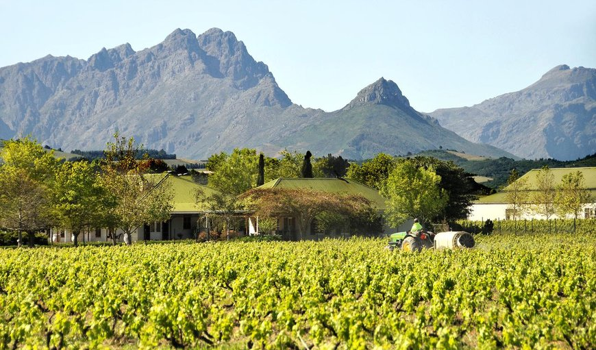Hoopenburg Guesthouse in Stellenbosch, Western Cape, South Africa