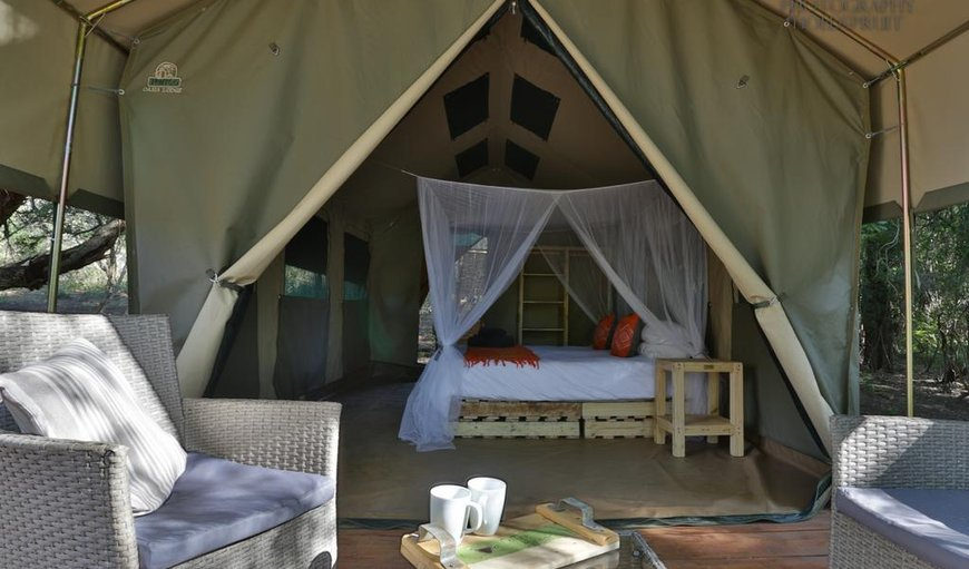 Safari Tent 1 with a king size bed & patio.