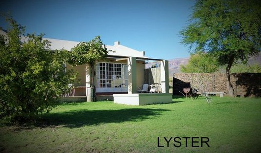 Lyster has a small splash pool.  in Cederberg, Cape Town, Western Cape , South Africa
