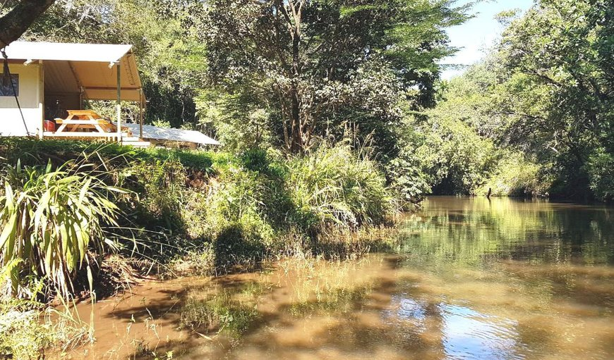 AfriCamps at Mackers is magnificently set on the river bank of the Sabie River.