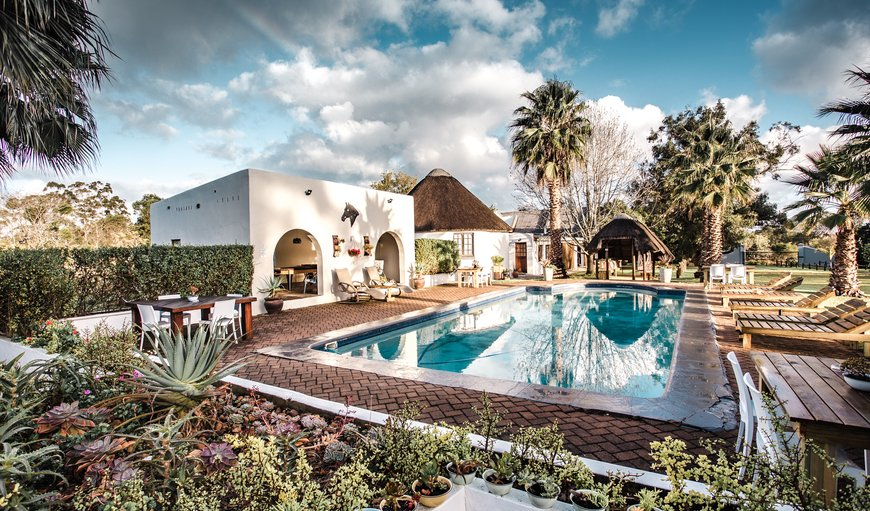 Main pool area and games room in Plettenberg Bay, Western Cape , South Africa