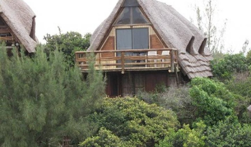 Welcome to Tiger Shark @ Cova & Reolize Lodge in Macaneta, Mozambique, Mozambique, Mozambique