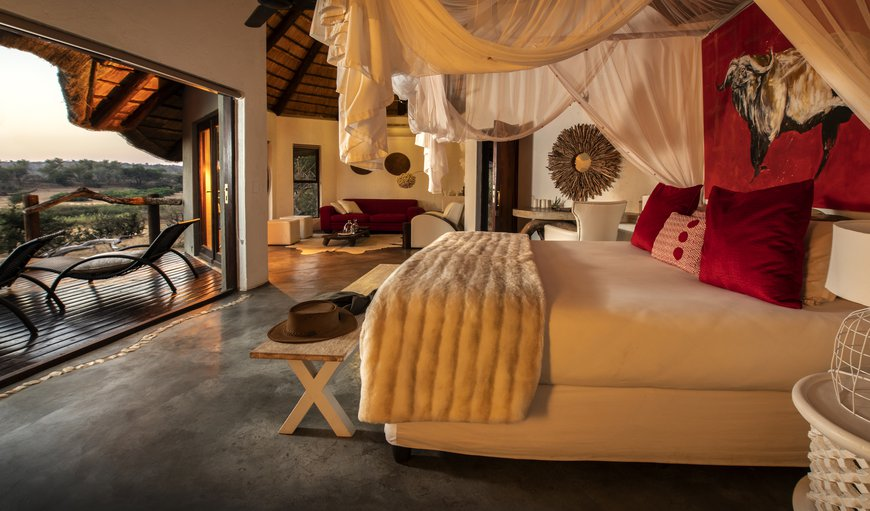 Pondoro Game Lodge in Balule Nature Reserve, Limpopo, South Africa