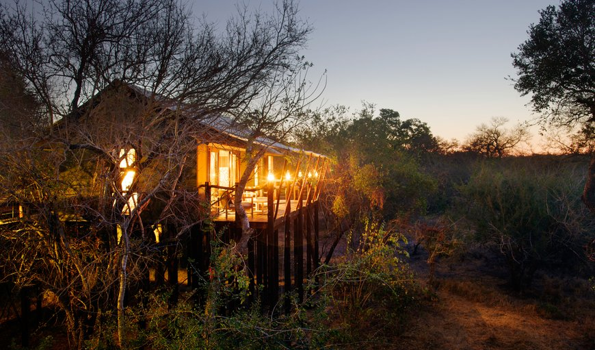 Kapama Buffalo Camp in Central Kruger Park Region, Mpumalanga, South Africa