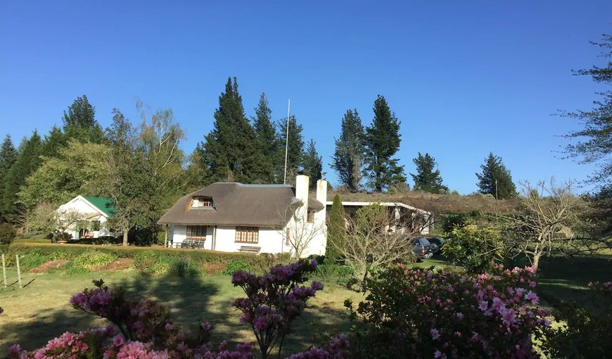Welcome to Windrush on Hogsback - The Bird House in Hogsback, Eastern Cape, South Africa