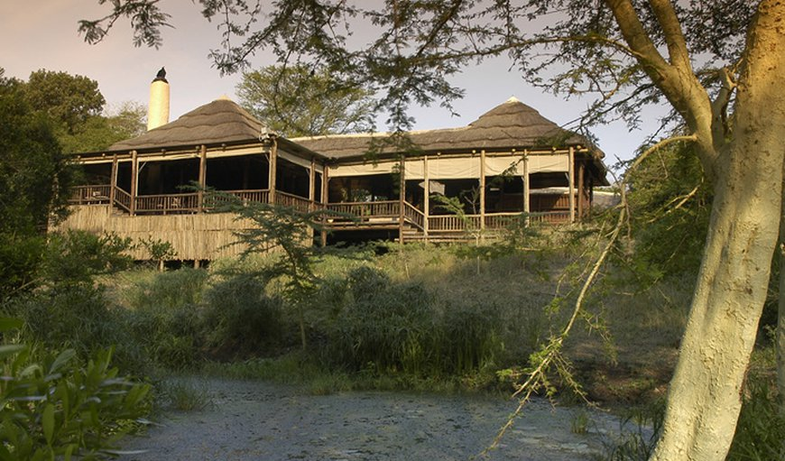 Welcome to Zululand Tree Lodge in Hluhluwe, KwaZulu-Natal , South Africa