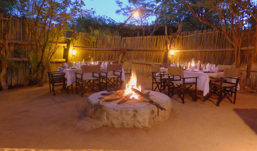 Masodini Private Game Lodge in Balule Nature Reserve, Limpopo, South Africa