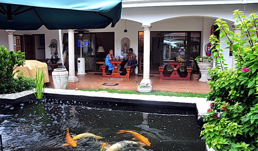 Centre court b b in durban north durban best price for Koi ponds durban