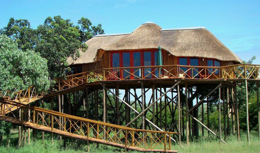 Dream Treehouse/Pezulu Tree House Game Lodge