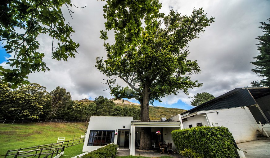 Welcome to High Season Luxury Farm Cottages Oak Tree. in Hemel En Aarde Estate, Hermanus, Western Cape, South Africa