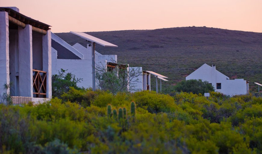 Welcome to the serene setting of The African Game Lodge in Montagu, Western Cape , South Africa