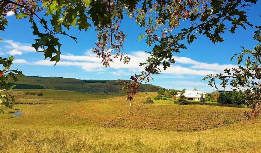 Welcome to Belfast Guest House. in Underberg, KwaZulu-Natal , South Africa