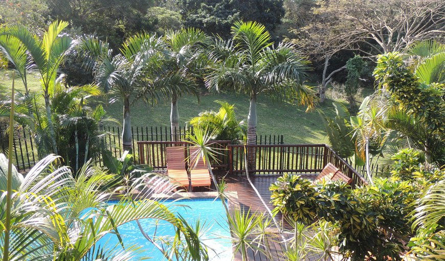 Elephant Coast Guesthouse in St Lucia, KwaZulu-Natal , South Africa