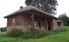 Castle Forest Lodge - Self Catering Cabin image
