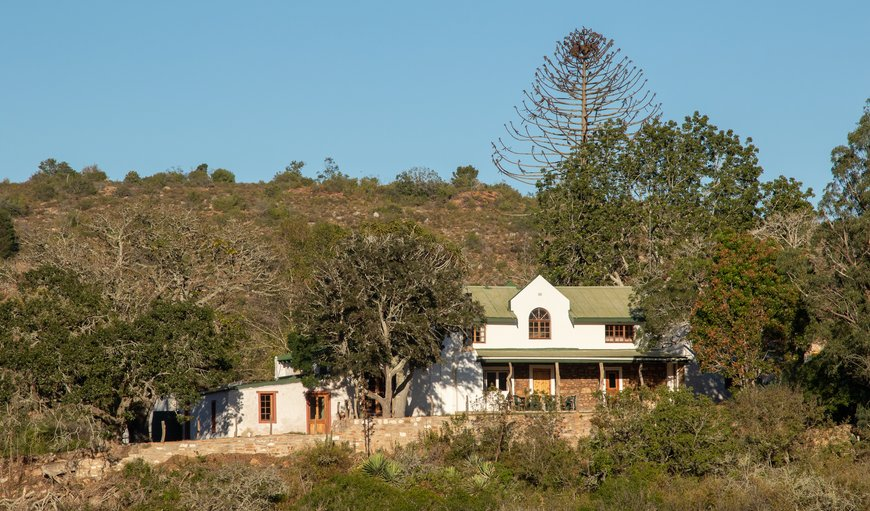 Welcome to Glenfillan Lodge in Grahamstown, Eastern Cape, South Africa