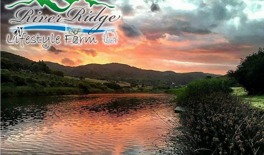Welcome to Riverridge LifeStyle Farm. in Still Bay West, Still Bay (Stilbaai), Western Cape, South Africa