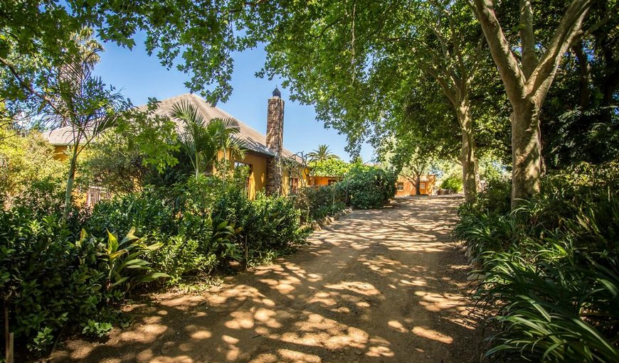 Welcome to Winemakers House Farm Accommodation in Stellenbosch, Western Cape, South Africa
