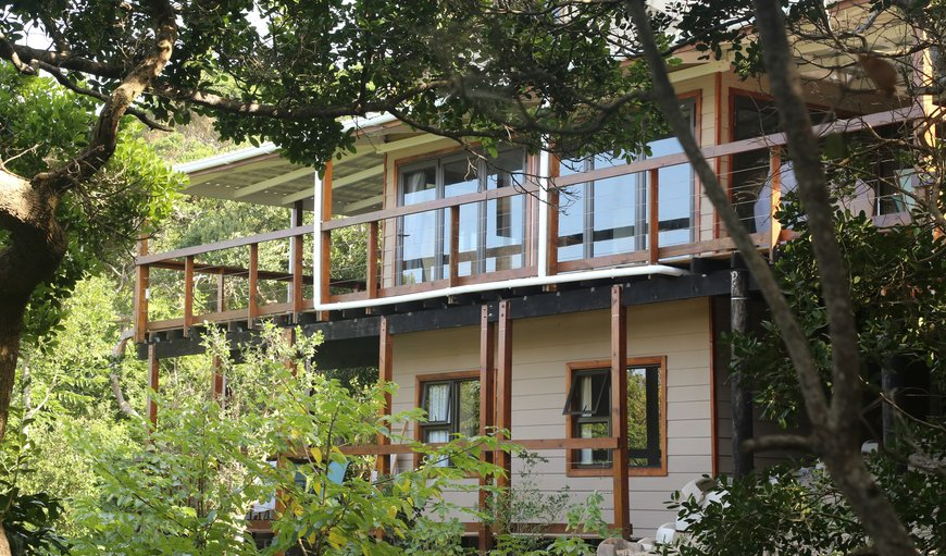 Welcome to Dolphin Treasure in Ponta do Ouro, Maputo Province, Mozambique