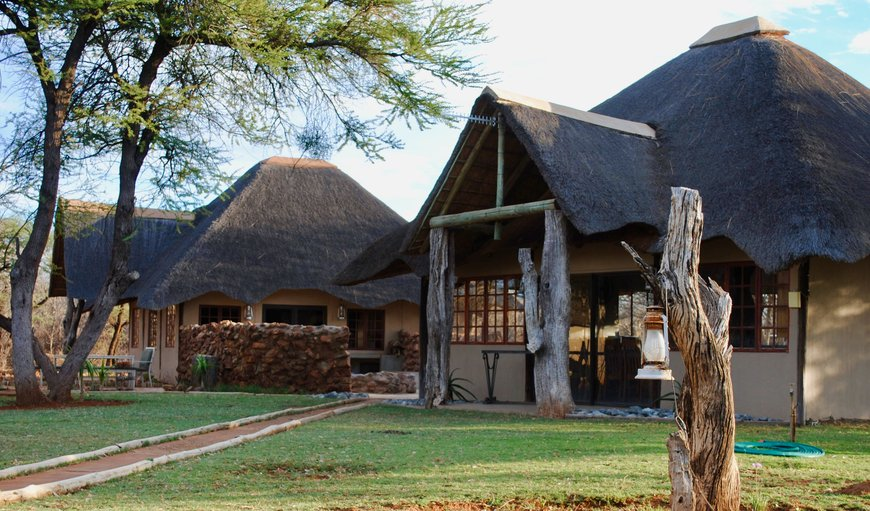 Buffelsvlei Game Lodge in Thabazimbi, Limpopo, South Africa