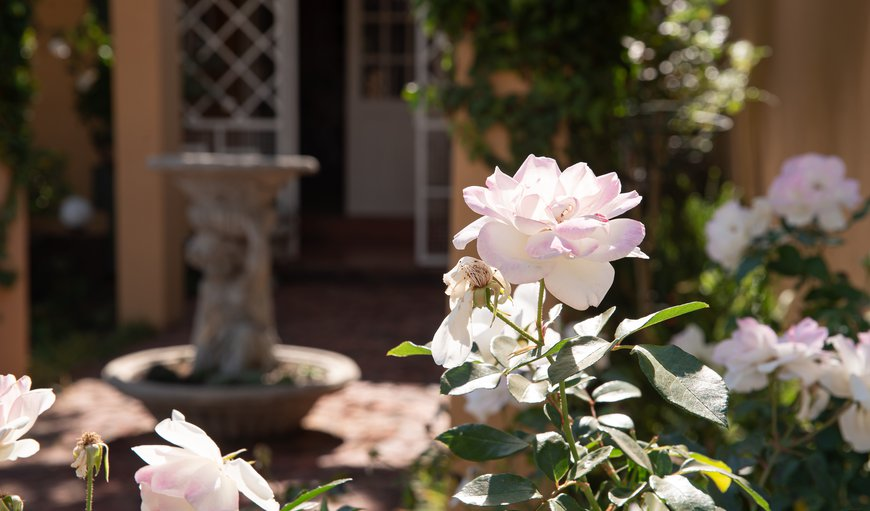 Roses and Pebbles B & B Guest House in Klerksdorp, North West Province, South Africa