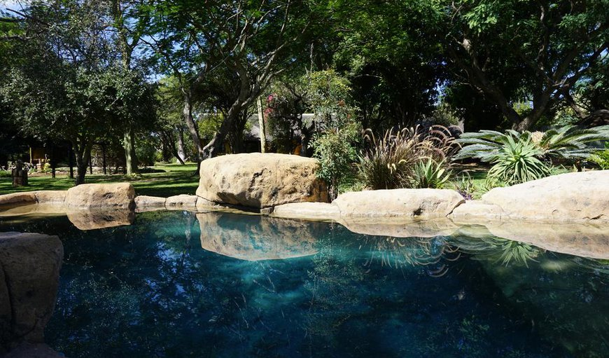Welcome to Kum Kula Lodge in Hoedspruit, Limpopo, South Africa