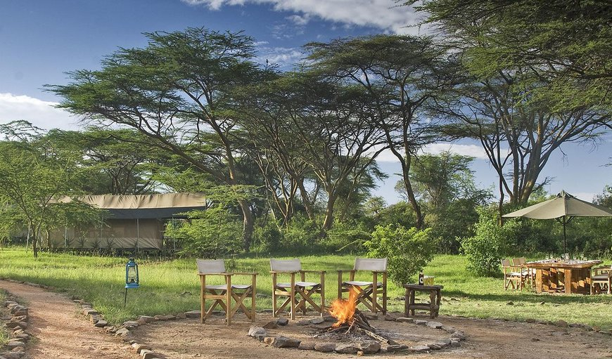 Welcome to Porini Mara Camp! in Masai Mara, Rift Valley, Kenya