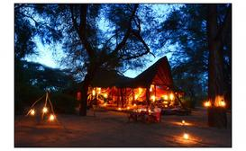 Elephant Watch Camp image