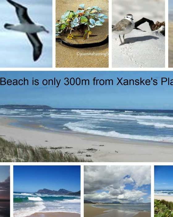 Kleinmond Beach- only 300m from Xanske's Place