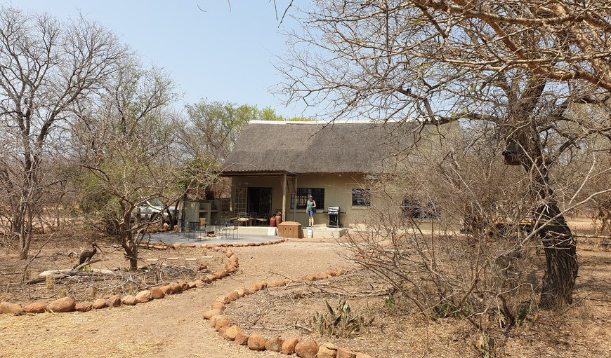Welcome to Safari Bush Retreat in Marloth Park, Mpumalanga, South Africa