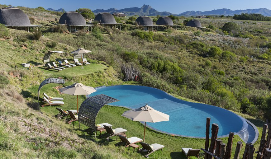 Welcome to Gondwana Game Rerve - (Kwena Lodge Pool) in Mossel Bay, Western Cape, South Africa