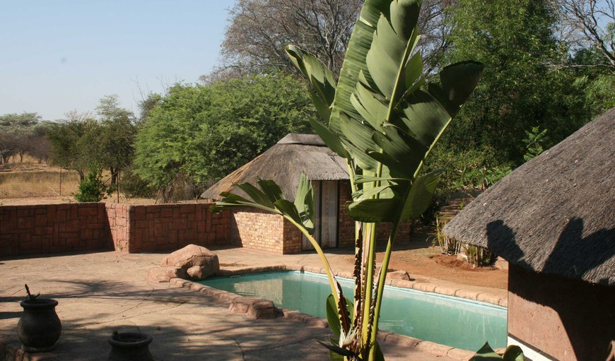 Welcome to Kranskop Lodge in Modimolle (Nylstroom), Limpopo, South Africa