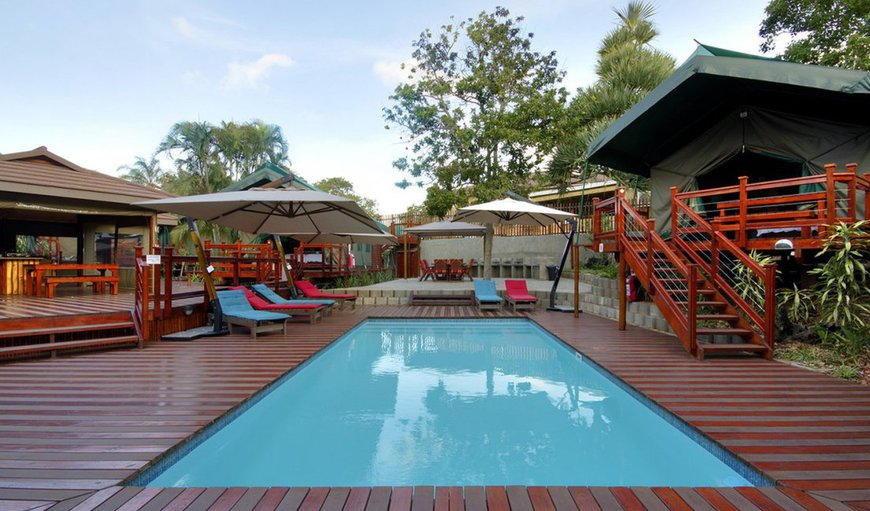 Luxury Tented Village @ Urban Clamping in St Lucia, KwaZulu-Natal, South Africa