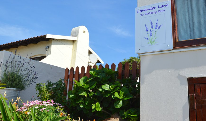 Welcome to Lavender Lane in Plettenberg Bay, Western Cape, South Africa