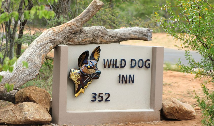 Welcome to Wild Dog Inn