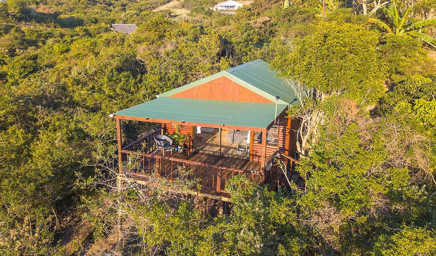 Welcome to The Cabin in Morgans Bay, Eastern Cape, South Africa