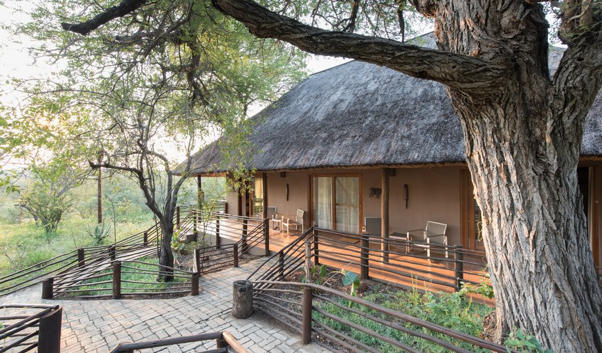 Welcome to Toro Yaka Bush Lodge in Mica, Hoedspruit, Limpopo, South Africa