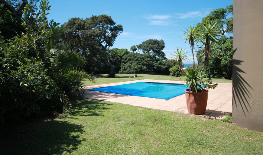 Welcome to Pool and garden in Shelly beach, KwaZulu-Natal, South Africa